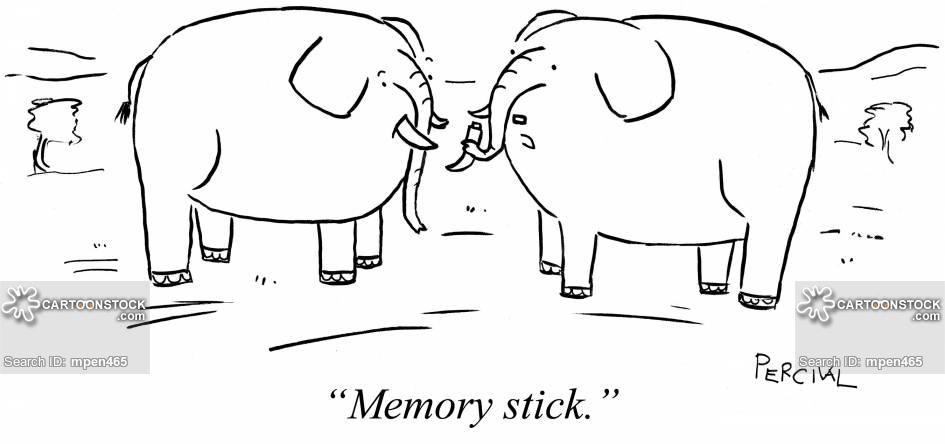 'Memory stick.'